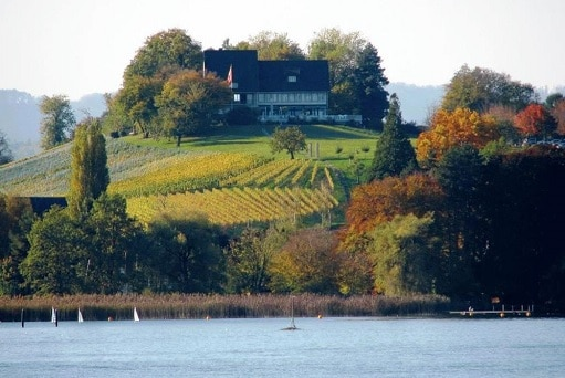 Weinbaumuseum Zuerichsee Events